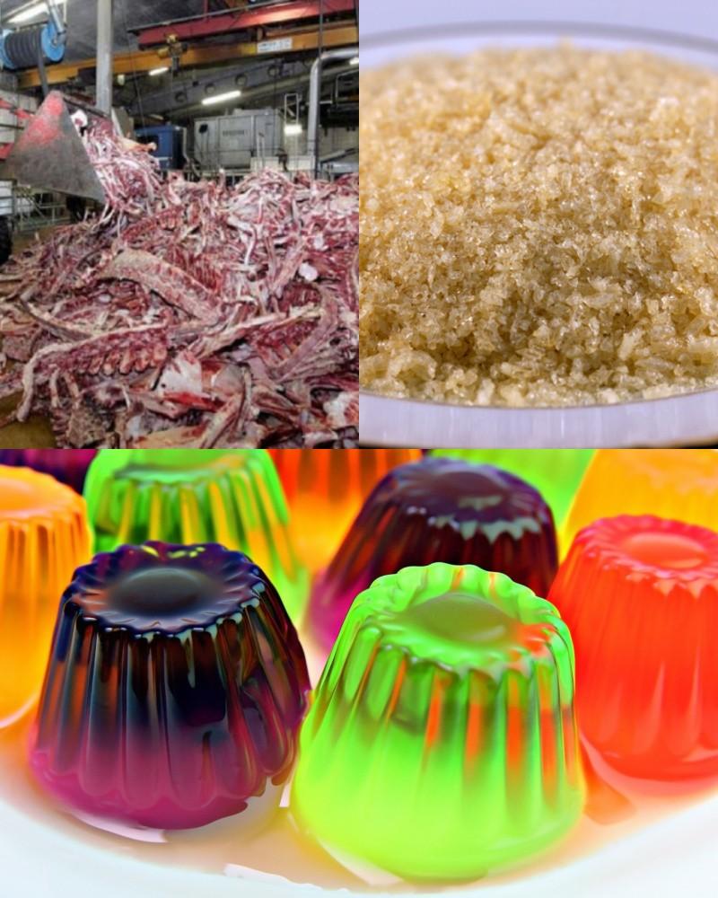 пищевые добавки, улучшающие внешний вид продуктов